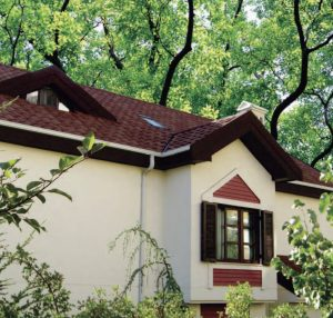 Spring Roof Maintenance Tips