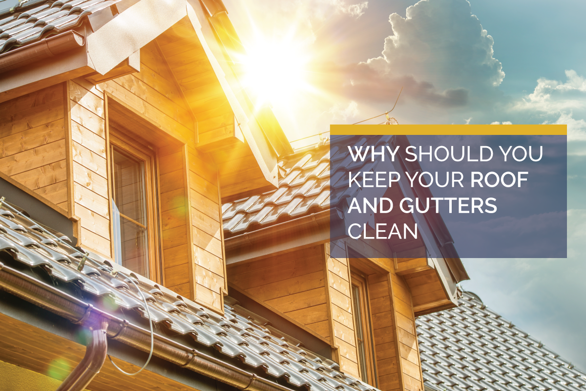 Keeping Your Roof and Gutters Clean