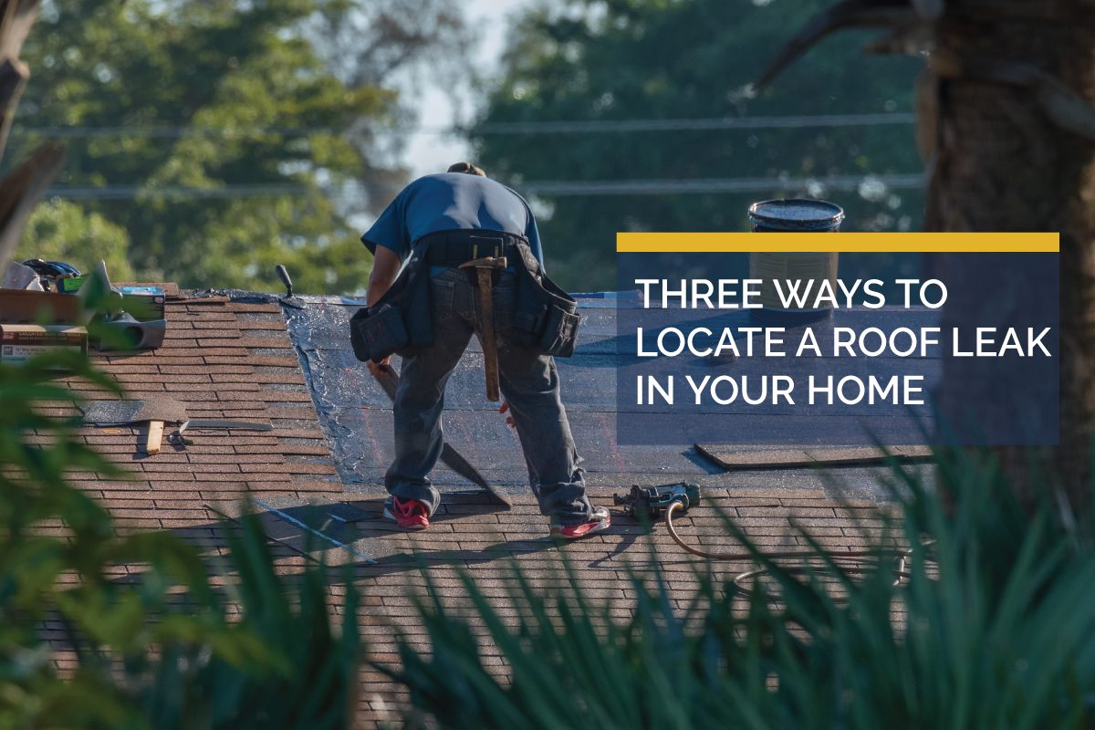 How to Look for a Roof Leak in Your Home