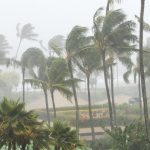 Why Florida Weather Is Your Roof's Worst Enemy