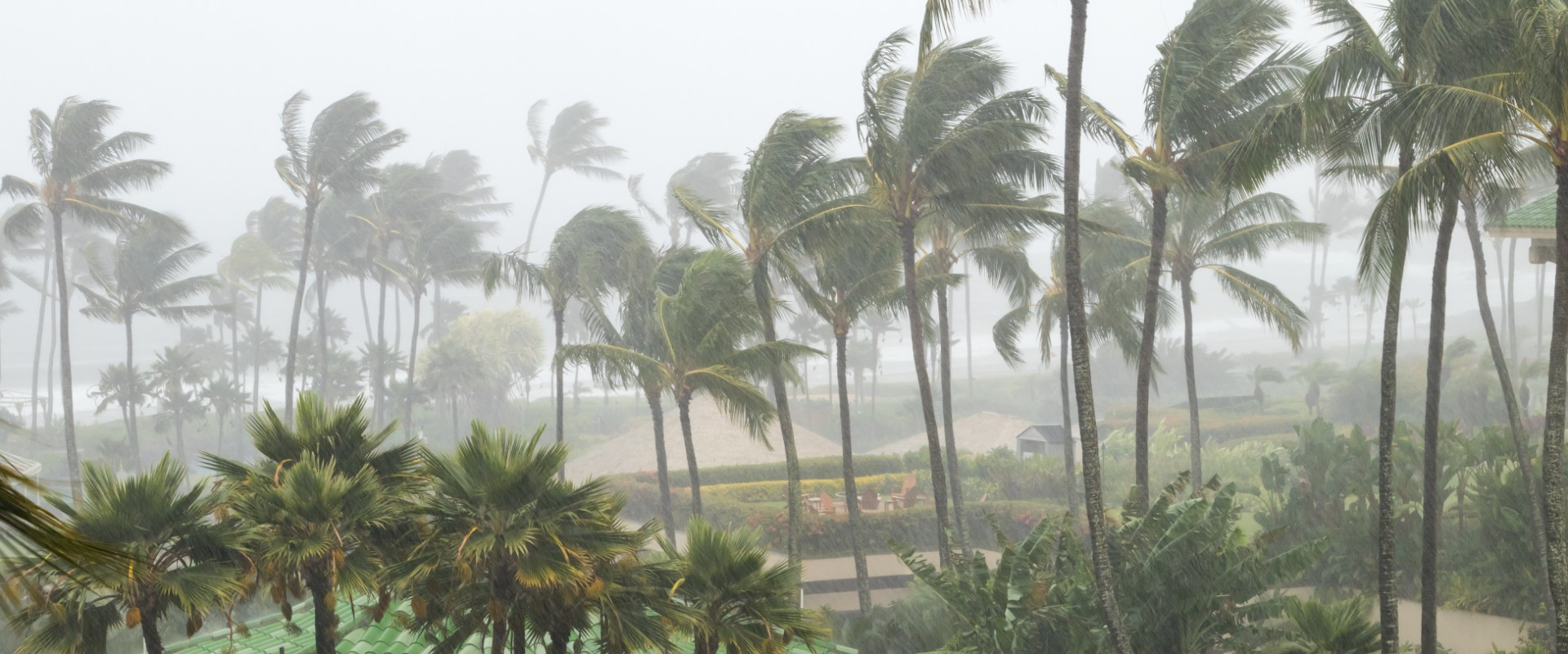 Read more about the article Why Florida Weather Is Your Roof's Worst Enemy